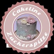 Zuckerspitze-Tortenkurs